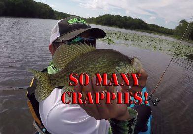 Crappie Fishing Galore – Kayak Fishing – South New Jersey Slabs
